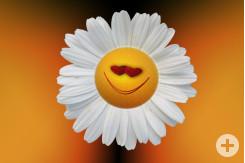 Smiley Margarite